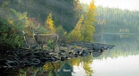 Autumn Gold by Terry Isaac