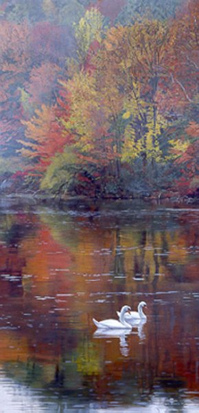 Autumn Reflection by Terry Isaac