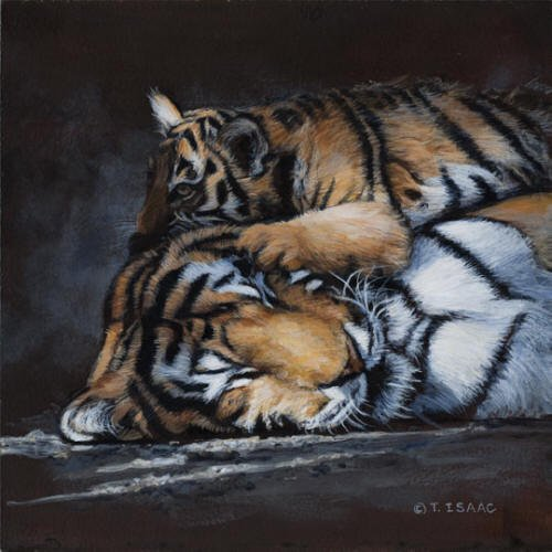 Warm Pillow - Terry Isaac