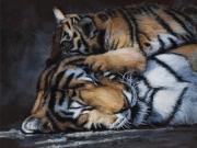 Warm Pillow - Terry Isaac