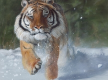 Kicking Snow, by Terry Isaac