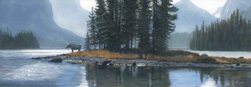 Spirit Island Moose - Terry Isaac