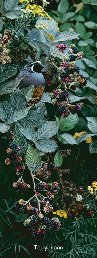 Brambles and Brass Buttons - Terry Isaac