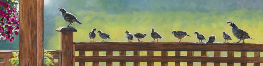 Quail Crossing - Terry Isaac