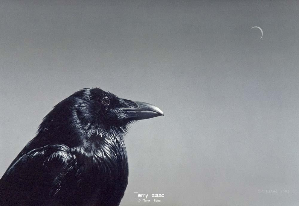 Raven and Moon - Terry Isaac