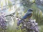 Springtime Blues, by Terry Isaac