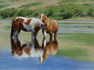 """Cooling Off"" by Terry Isaac"