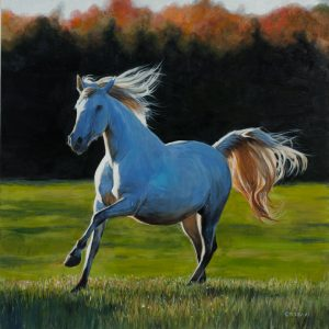 """Full Gallop"" by Terry Isaac"