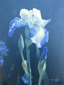 """Iris Portrait"" by Terry Isaac"