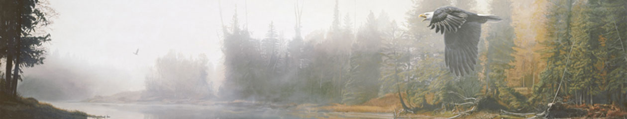 Terry Isaac – Wildlife Artist