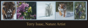 Terry Isaac, Nature Artist