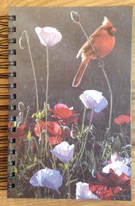 Notebook – Cardinal
