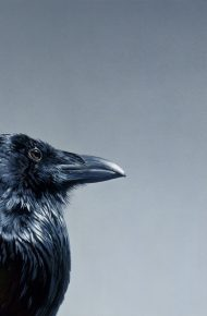 Raven and Moon