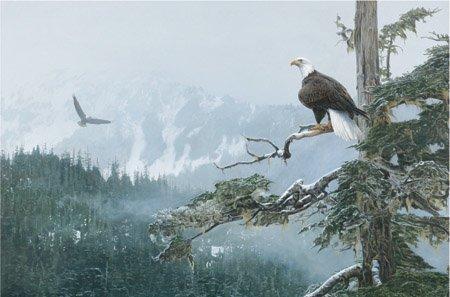On Eagle Wings