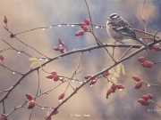 Crown Among Thorns by Terry Isaac