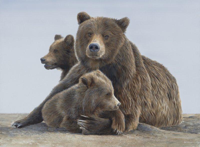 Bear Hug - Terry Isaac
