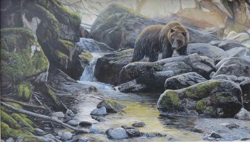 Creekside Explorer by Terry Isaac