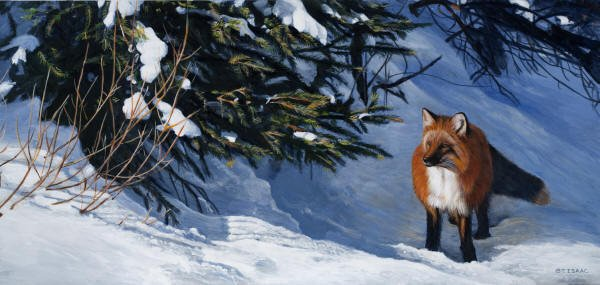 Fox Glow by Terry Isaac