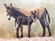Its All About the Donkeys - Terry Isaac
