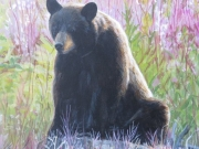 Sitting Bear - Terry Isaac