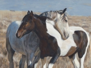 Western Companions - Terry Isaac