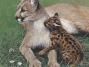Mothers Warmth by Terry Isaac