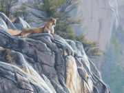 Mountain King by Terry Isaac