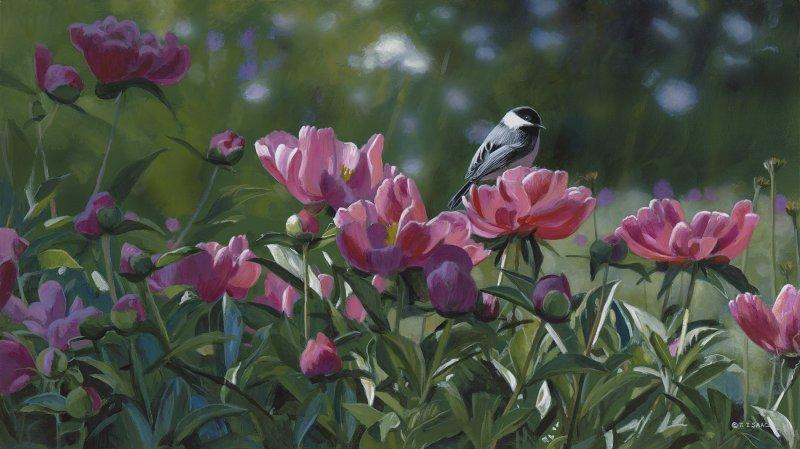 Peonies Aglow - Terry Isaac