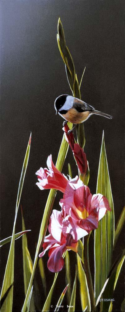 Chickadee and Pink Gladiolas - Terry Isaac