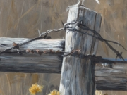 On the Fence - Terry Isaac