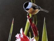 Chickadee and Pink Gladiolas - Terry Isaac