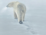 Disappearing Footprints - Terry Isaac