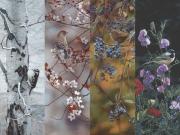 Seasonal Quartet (4 Prints) - Terry Isaac