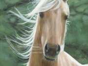 Wind Swept - Terry Isaac