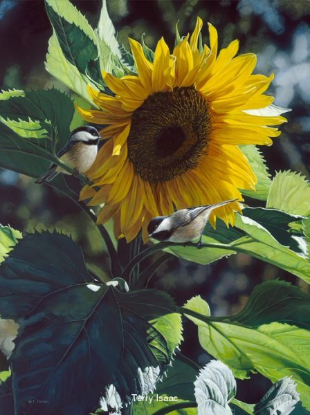 Sunbathers - Terry Isaac