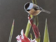 Chickadee and Pink Gladiolas, by Terry Isaac