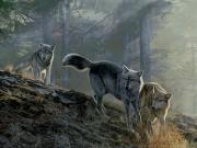 Team Spirit, by Terry Isaac