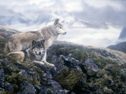 Above the Timberline, by Terry Isaac