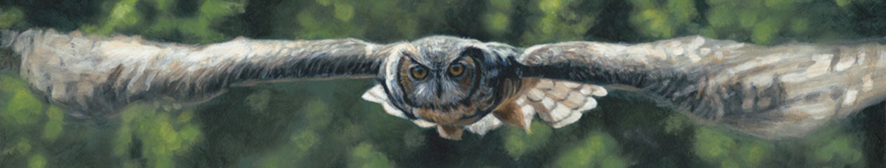 Terry Isaac – Wildlife Artist