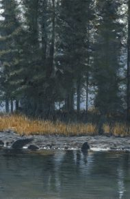 Spirit Island Moose