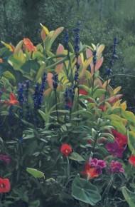 Bateman's Flowers