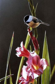 Chickadee and Pink Gladiolas